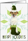 Jack Russell Terrier Dog | Green Snowflake Blank Holiday Card