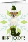 Custom Jack Russell Terrier Dog | Green Santa Hat & Stocking card