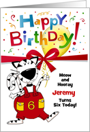 See More Great BIRTHDAY CARDS For Cat Lovers