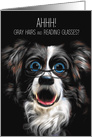 Funny Border Collie with Reading Glasses and Gray Hair card