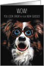 Congratulations on Your New Glasses Funny Border Collie card