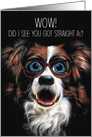 WOW! Straight As Funny Border Collie in Glasses card