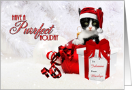 Cat Lovers Custom Christmas in Red and White card