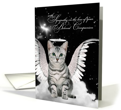 pet sympathy cards for the loss of a cat from pawsitively petrageous