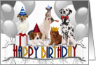 Happy Birthday From the Pack Dogs card