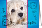 Friendship Day card featuring a Dandie Dinmont Terrier card