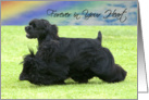 Pet Loss - Forever In Your Heart (Black Cocker Spaniel) card