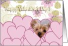 Valentine's Greeting - featuring a Yorkshire Terrier card