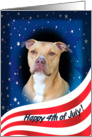 July 4th Card - featuring an American Staffordshire Terrier card