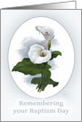 Remembering Baptism Day, Calla Lily, botanical style card