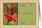 Customizable Collage Style, Monarch Butterfly,blank inside card