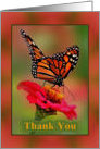 Thank You, with Photograph of Monarch Butterfly card