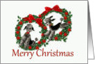 Retro Christmas Poodles in Wreaths card