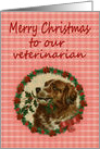 Merry Christmas Veterinarian, Vintage Saint Bernard with Holly Branch card