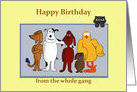 Happy Birthday from whole gang/cartoon animals card