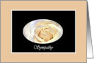 Sympathy Loss of Daughter, Pearl White Rose card