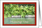 Missing You for Wife, Lush Vegetation and Pond card