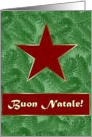 Italian Christmas, Red Star on Spruce Sprigs card