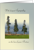 Deepest Sympathy, Loss of Partner, Morning Mist Over Mountain Lake card