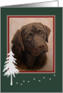 Chocolate Labrador Portrait Painting Happy Holiday Tree and Paw Tracks card