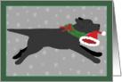 Christmas - Black Lab Steals Santa's Hat card