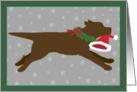 Christmas - Chocolate Lab Steals Santa's Hat card