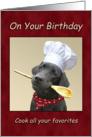 Birthday Chef Black Labrador Cooking card
