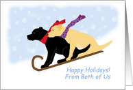 Happy Holidays Black & Yellow Labrador Dogs on Sled from Both of Us card