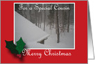 Merry Christmas - For a Special Cousin card