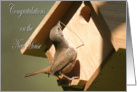 New Home House Wren bird at birdhouse card