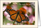 Do not be sad sympathy butterfly card