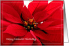 Birthday/December Poinsettia card