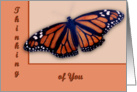 Monarch Thinking Of You card