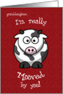 Valentine's Day Cow Moo Humorous for Granddaughter card