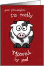 Valentine's Day Cow Moo Humorous for Great Granddaughter card