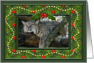 Bobcat Christmas Happy Holidays Card