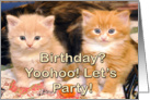 Birthday? yoohoo let's party card