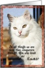 White Angora Romans 8:37 card