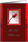 Red Rose Be My Valentine Card