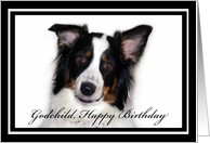 Australian Shepherd Happy Birthday Godchild card