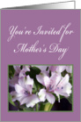Flowers and Ferns, Mother's Day Invitation card