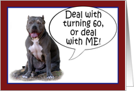 Pit Bull, Deal with it! Turning 60 card