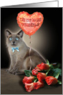 Be my Valentine / Cat card