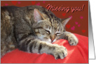 Missing you Cat card