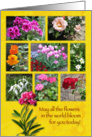 Birthday Flower Photos card