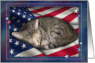Cat with Flag, 4th of July card