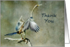 Thank You, Kindness - Bird card
