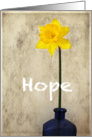 Hope and Encouragement - Daffodil card