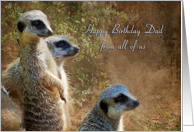 Dad Birthday - Meerkat Family card