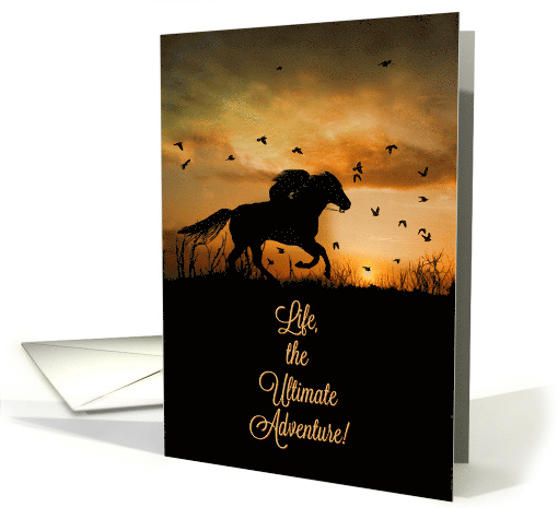 Birthday Cards For The Horse Lover With A Western Flare